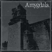 Amygdala: Our Voices Will Soar Forever, LP