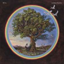 Bill Fay: Countless Branches, LP
