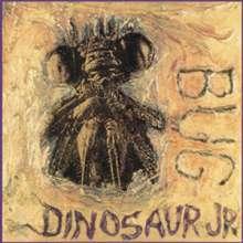 Dinosaur Jr.: Bug, LP