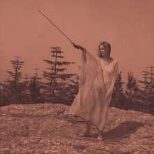 Unknown Mortal Orchestra: II, LP