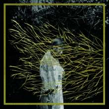 Forest Swords: Engravings, 2 LPs