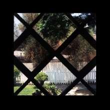 Psychic Temple: III, LP