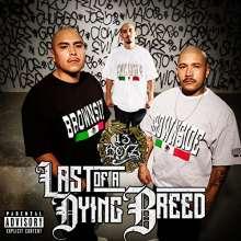 13 Boy'z: Last Of A Dying Breed, CD