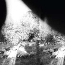 Godspeed You! Black Emperor: Asunder, Sweet And Other Distress (180g), LP