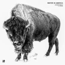 """Johannes Brecht/feat. Fetsum: Winter In America (White Vinyl), Single 12"""""""