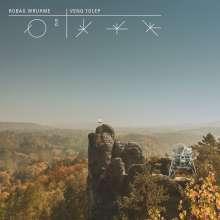 Robag Wruhme: Venq Tolep (Limited-Edition), 2 LPs