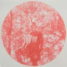 Owen Pallett: Heartland, CD