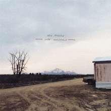 Will Johnson: Wire Mountain, LP