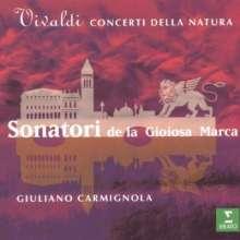 Antonio Vivaldi (1678-1741): Violinkonzerte RV 90,95,104,151,253,335a,362, CD