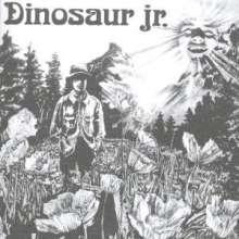 Dinosaur Jr.: Dinosaur Jr., CD