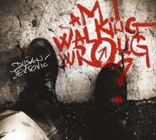 Dusan Jevtovic: Am I Walking Wrong?, CD