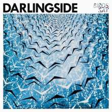 Darlingside: Birds Say, CD