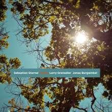 Sebastian Sternal (geb. 1983): Home, CD
