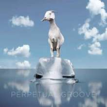 Perpetual Groove: Perpetual Groove, CD