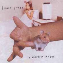 Sonic Youth: A Thousand Leaves, CD