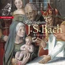 Johann Sebastian Bach (1685-1750): Kantaten BWV 82 & 199, SACD
