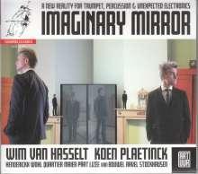Wim van Hasselt - Imaginary Mirror, CD
