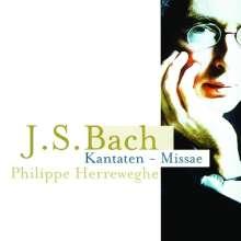 Johann Sebastian Bach (1685-1750): Messen BWV 233-236 (Lutherische Messen), 4 CDs