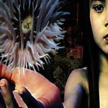 The Future Sound Of London: Lifeforms, 2 CDs