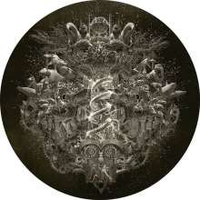 Nightwish: Endless Forms Most Beautiful (Limited Edition) (Picture Disc), 2 LPs