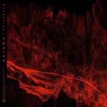 Aviana: Epicenter, CD