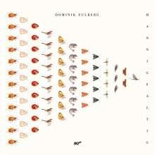 Dominik Eulberg: Mannigfaltig, CD