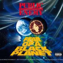Public Enemy: Fear Of A Black Planet, CD