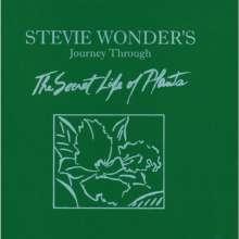 Stevie Wonder (geb. 1950): Journey Through The Secret Life, 2 CDs