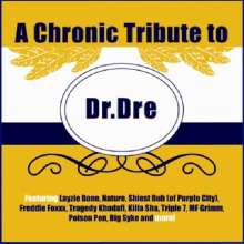 Tribute To Dr. Dre: Chronic Tribute To Dr. Dre, CD