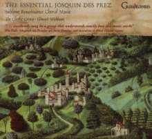 Josquin Desprez (1440-1521): Chormusik, CD