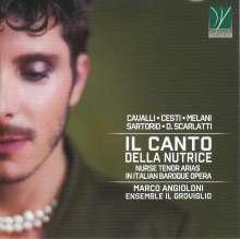 Marco Angioloni - Il Canto Della Nutrice, CD