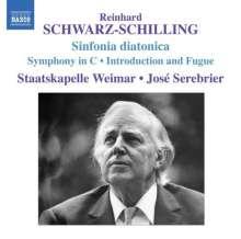 Reinhard Schwarz-Schilling (1904-1985): Orchesterwerke Vol.1, CD