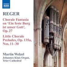 Max Reger (1873-1916): Sämtliche Orgelwerke Vol.8, CD