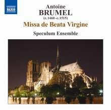 Antoine Brumel (1460-1520): Missa de Beata Virgine, CD