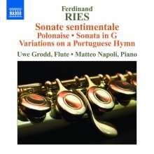 Ferdinand Ries (1784-1838): Werke für Flöte & Klavier, CD