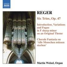 Max Reger (1873-1916): Sämtliche Orgelwerke Vol.6, CD
