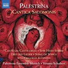 Giovanni Pierluigi da Palestrina (1525-1594): Cantica Salomonis, 2 CDs