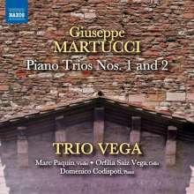 Giuseppe Martucci (1856-1909): Klaviertrios Nr.1 & 2 (op.59 & 62), CD