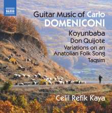 Carlo Domeniconi (geb. 1947): Gitarrenwerke, CD