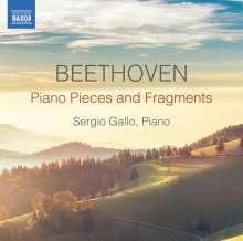 Ludwig van Beethoven (1770-1827): Klavierstücke & Fragmente (Skizzen,Miniaturen,Kadenzen,Transkriptionen,Arrangements), CD