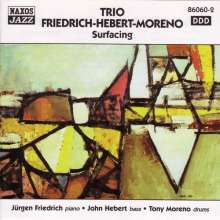 Friedrich/Herbert/Moreno: Surfacing, CD