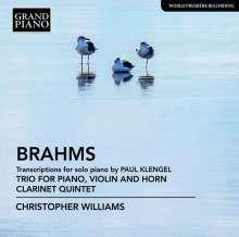 Johannes Brahms (1833-1897): Transkriptionen für Klavier, CD