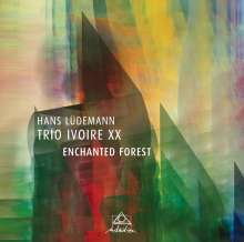 Hans Lüdemann (geb. 1961): Enchanted Forest, CD