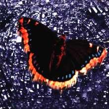 Baroness: The Royal Treatment, CD