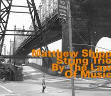 Matthew Shipp (geb. 1960): By The Law Of Music, CD