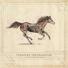 Turnpike Troubadours: A Long Way From Your Heart, CD