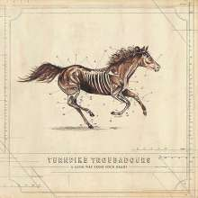 Turnpike Troubadours: A Long Way From Your Heart (Clear Vinyl) (45 RPM), 2 LPs