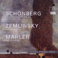 Alexander von Zemlinsky (1871-1942): Klaviertrio op.3, CD