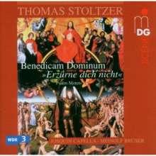 Thomas Stoltzer (1480-1526): Deutsche & lateinische Psalm-Motetten, CD