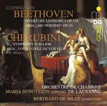 Luigi Cherubini (1760-1842): Symphonie D-Dur, Super Audio CD